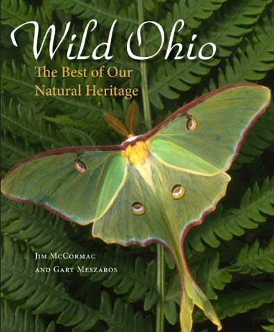 Ohio Book Cover