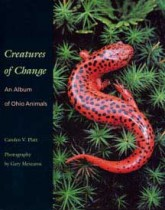 Platt Book Cover