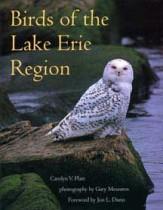 Birds Book Cover