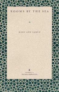 Samyn Book Cover