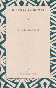 Vice Book Cover